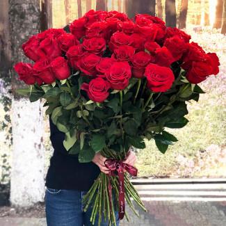 51 Premium Ecuador Red Roses