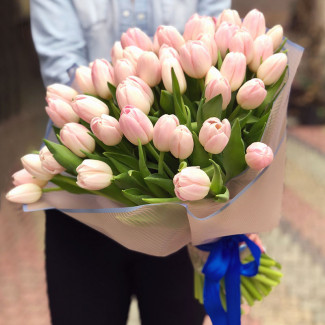 51 Нежно Розовый Тюльпан