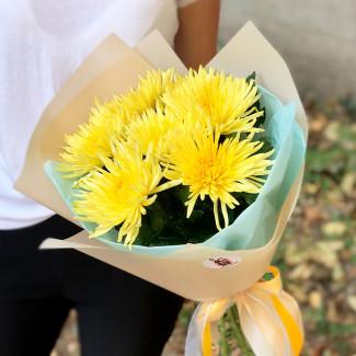Большие жёлтые хризантемы фото