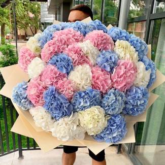 Bouquet of Colorful Hydrangeas