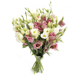 "Bouquet ""Pink Nimph"""