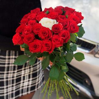 25 красных роз и 1 белая фото