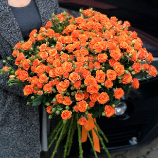 Trandafiri de tufiș portocaliu fotografie