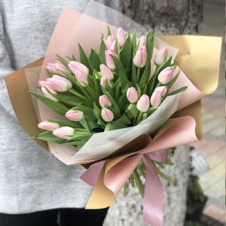 29 Soft Pink Tulips