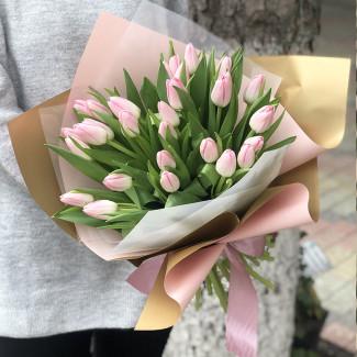 29 Нежно - Розовых Тюльпанов