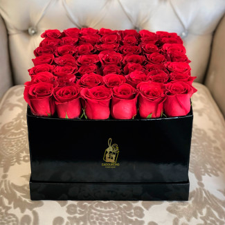 Red Roses in a Black Square...