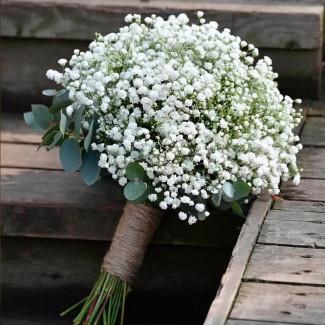 Gypsophila Bride's Bouquet