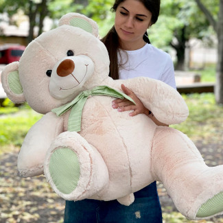 Intelligent Teddy Bear