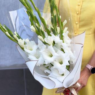 White Gladioli