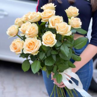 15 Trandafiri Piersic