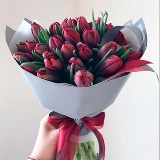 Deep Red Tulips