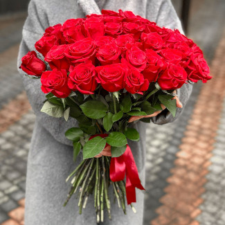 51 Red Roses 50-60 cm