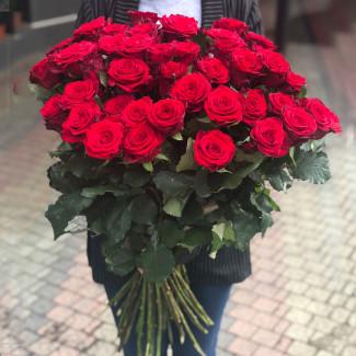 51 Trandafiri Roșii 70-80 cm