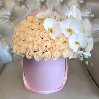 """Flori în Cutie """"Perla"""""""