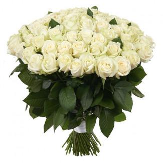 101 White Roses 70-80 cm