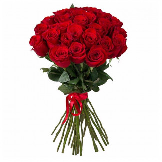 25 Red Roses 70-80 cm